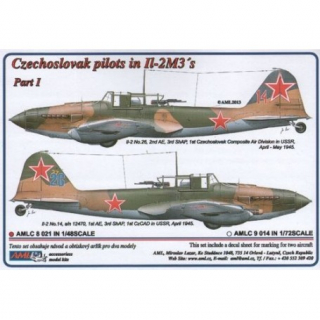 Dekály Czechoslovak pilots in Il-2 M3 Part I.; 2 ks; 1:48